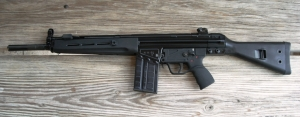 new gun pics at home 001